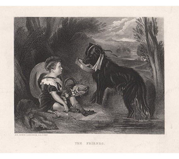 Friends dog engraving Edwin Landseer