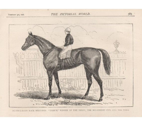 Briseis Winner Melbourne Cup engraving 1876