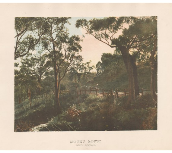Mount Lofty South Australia Photolithograph Phillip Stephan