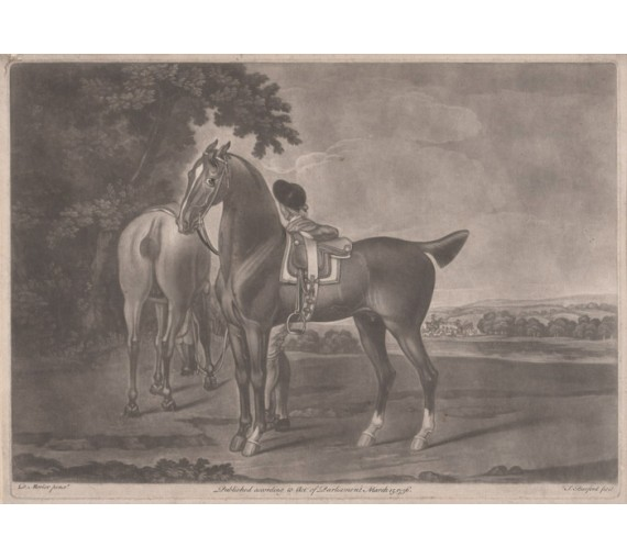horses Mezzotint engraving Thomas Burford David Morier
