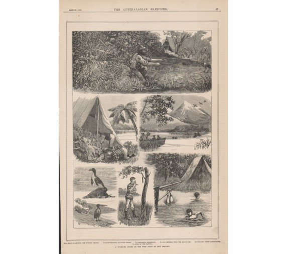 pleasure cruise new zealand engraving australasian sketcher