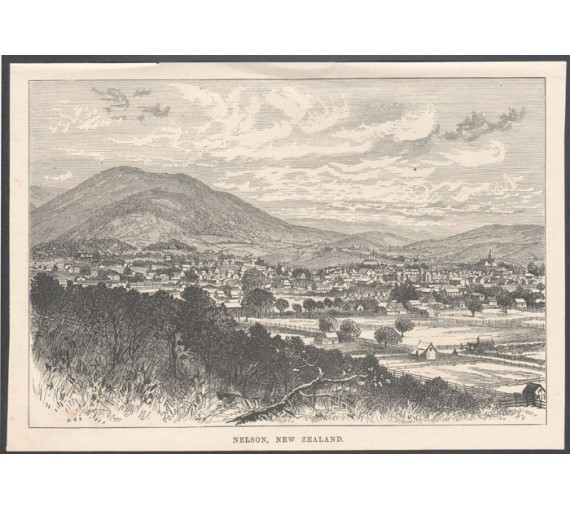 nelson new zealand engraving australasian sketcher