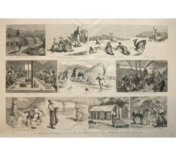 Camping Hunting Hortons Plain Ceylon antique engraving