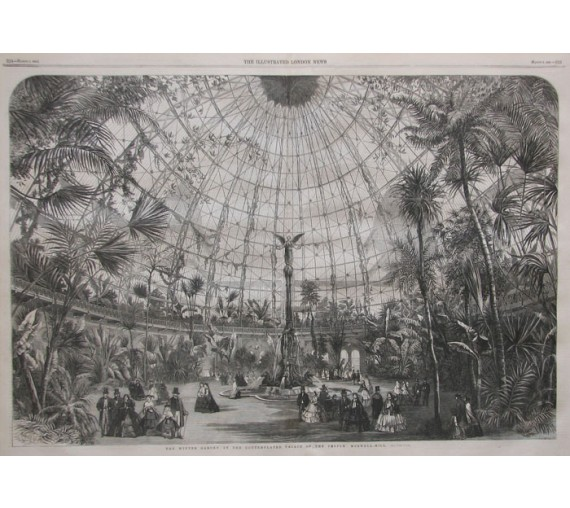 winter garden muswell hill greenhouse antique engraving