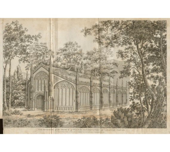 carlton house conservatory print antique engraving