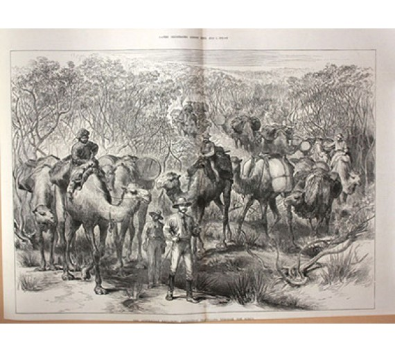 Australian exploring expedition travelling scrub engraving Jesse Young