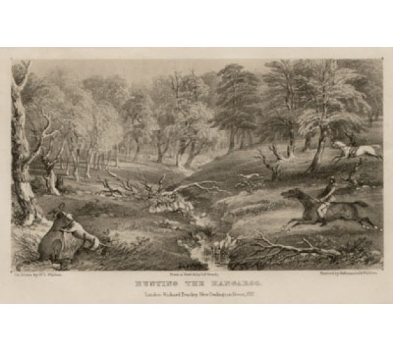 Hunting the kangaroo lithograph Walton Mundy 1852