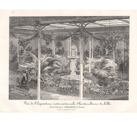 lille horticultural exhibition lithograph palms fountain flore serres
