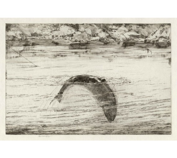Hooked Salmon signed angling etching George Marple