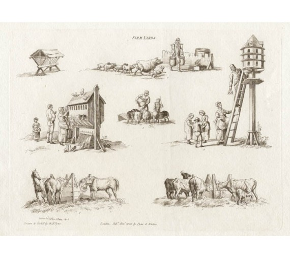farm yard pyne microcosm antique print