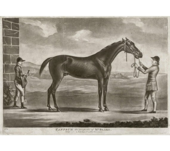 Tantrum george stubbs antique horse mezzotint engraving