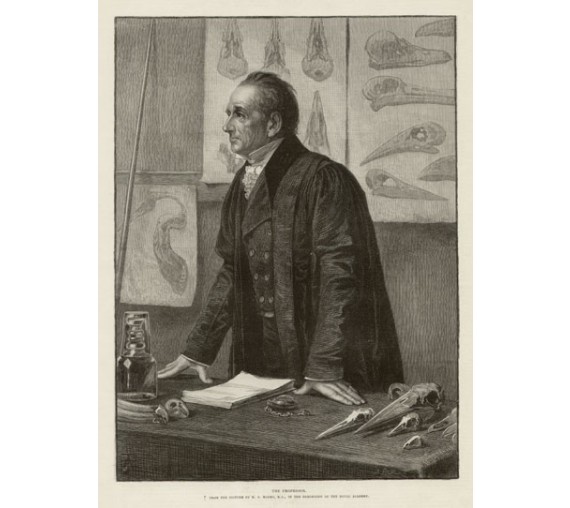 professor stacey marks antique engraving print
