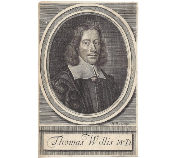 Thomas Willis portrait engraving doctor physician Loggan