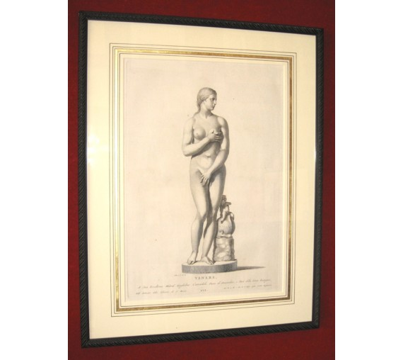 Venus Classical sculpture engraving