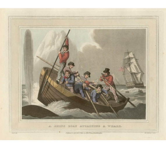 Whale Fishery Samuel Howitt Foreign Field Sports engraving
