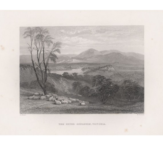 upper goulburn engraving