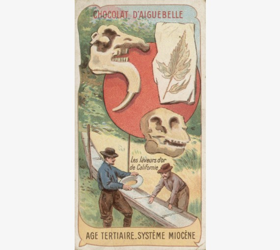 Age Tertiaire Systeme Miocene Chromolithograph Chocolaterie D'Aiguebelle