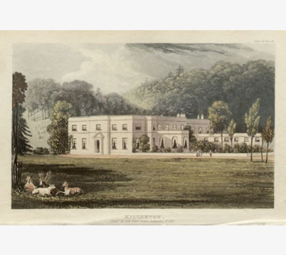 Killerton aquatint ackermann antique print exeter acland devon
