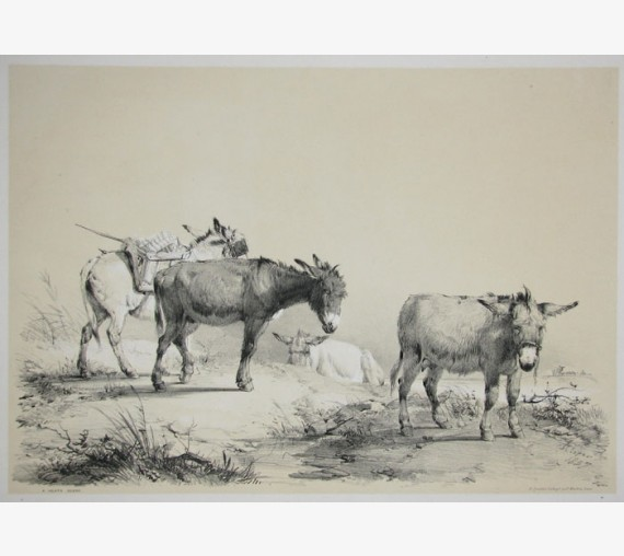 Heath Scene Tinted lithograph Thomas Sidney Cooper