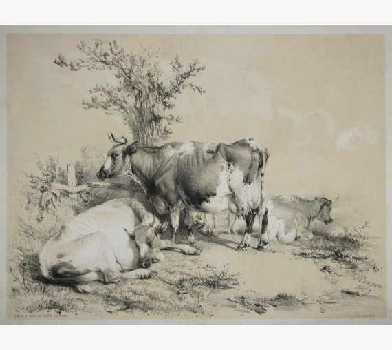 From a Sketch From Nature Tinted lithograph Thomas Sidney Cooper