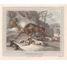 hunting elk antique print
