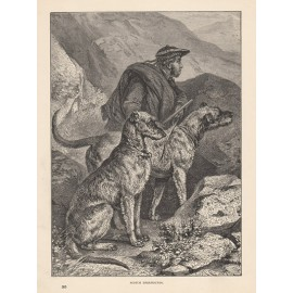 Scotch Deerhounds engraving Cassell book dog