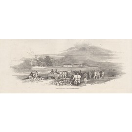 norfolk island convict system engraving illustrated london news