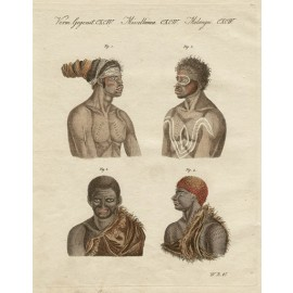 Habitants of New Holland engraving Bertuch aborigines