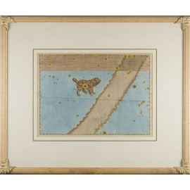 canis minor uranometria bayer antique celestial map