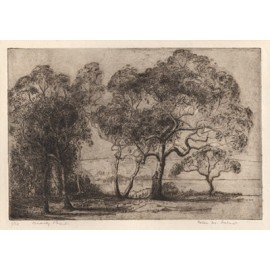 Beauty Point etching Helen Farmer tasmania