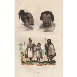 New Zealand Maoris engraving de Sainson