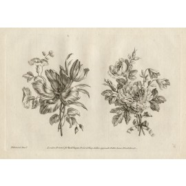 Ladies Amusement Flowers engraving Jean Baptiste Pillement