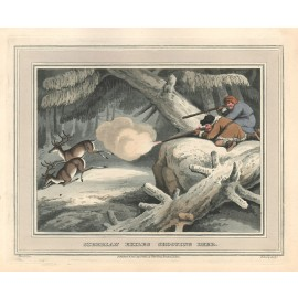 Siberia Shooting Deer Howitt antique print engraving