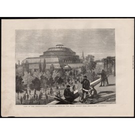 royal albert hall engraving print antique
