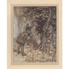 Midsummer's Night Dream illustration Arthur Rackham