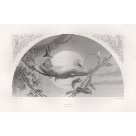 ariel Tempest shakespeare gallery engraving