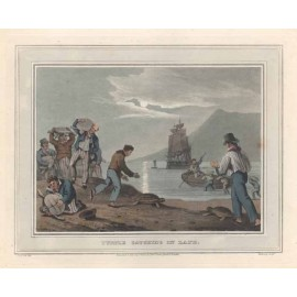 turtle catching land antique print