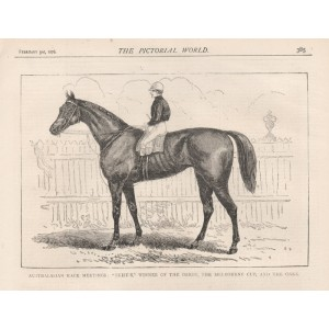 Briseis, Winner of the Melbourne Cup