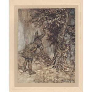 "Rackham -  Act III, Scene I  ""O Bottom, thou art changed!"" Midsummer's Night Dream"